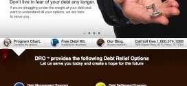 Debt Relief Options – DRO – Website Makes Me Say Huh?